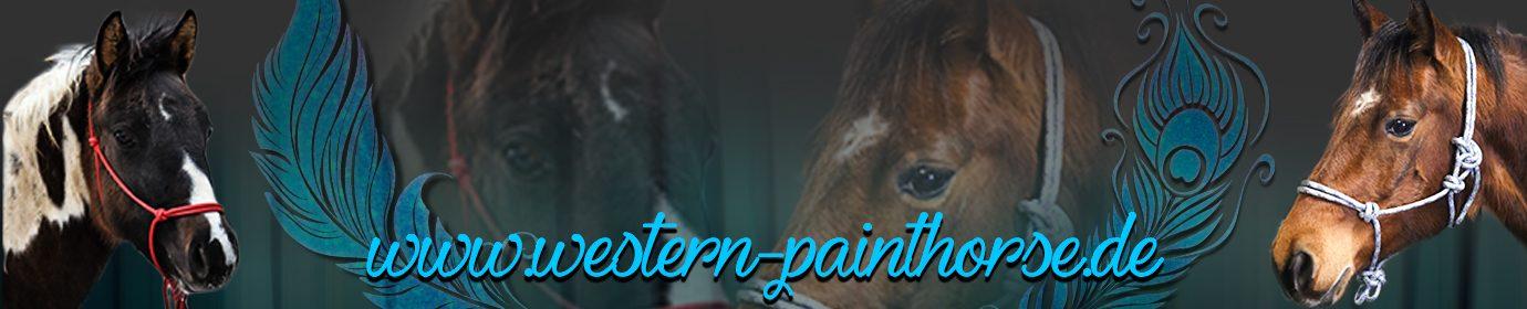 Western Painthorse